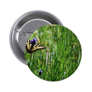 Tiger Swallowtail Butterfly Pinback Button