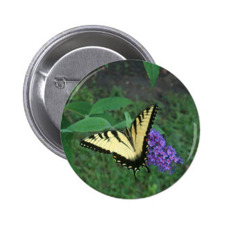 Tiger Swallowtail Butterfly Pinback Button
