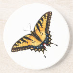 Tiger Swallowtail Butterfly Coaster