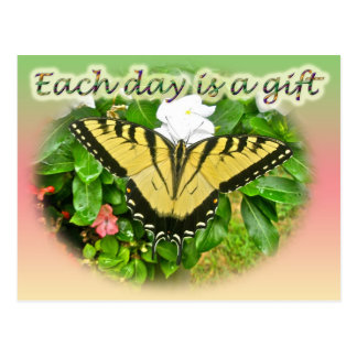 Tiger Swallowtail Butterfly Each Day is a Gift Postcard