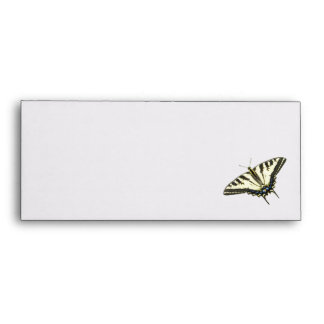 Tiger swallowtail butterfly Lepidopterology Envelope