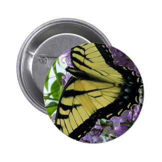 Tiger swallowtail butterfly lilac photo buttons