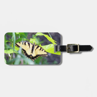 Tiger Swallowtail Butterfly Luggage Tag
