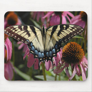 Tiger swallowtail butterfly mouse pad