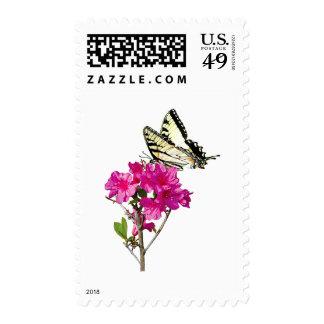 Tiger Swallowtail Butterfly on Azaleas Postage