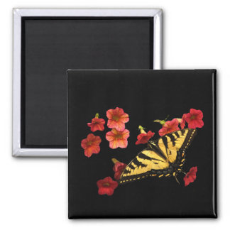 Tiger Swallowtail Butterfly on Red Flowers Fridge Magnets