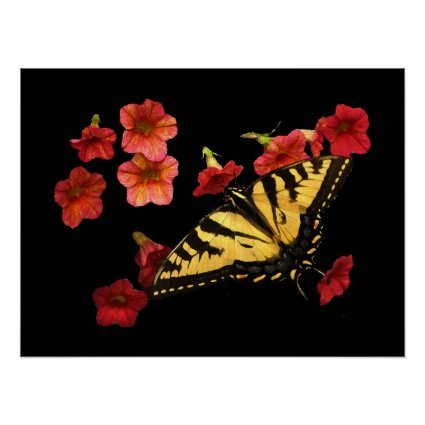 Tiger Swallowtail Butterfly on Red Flowers Poster