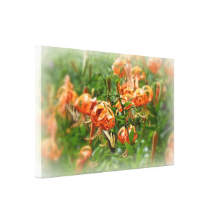 Tiger Swallowtail Butterfly on Turk's Cap Lilies Canvas Print