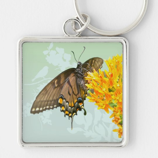Tiger Swallowtail Butterfly (Papilio glaucas) Item Keychain