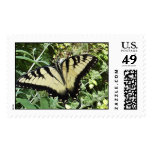 Tiger Swallowtail Butterfly Postage