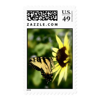 Tiger Swallowtail butterfly Stamps