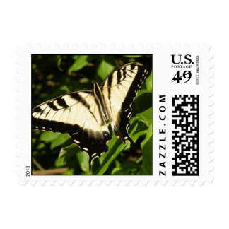 Tiger Swallowtail Butterfly Stamp