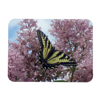 Tiger Swallowtail_lilacs Rectangular Magnet