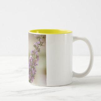Tiger Swallowtail Mug