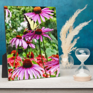 Tiger Swallowtail On Coneflower Plaque