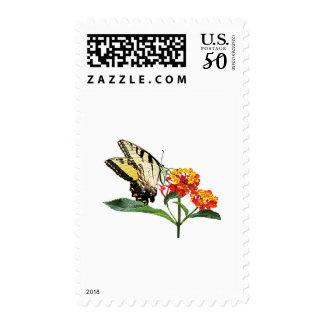 Tiger Swallowtail on Lantana Postage