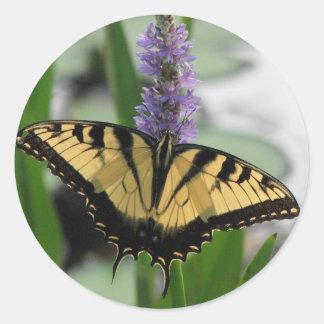 Tiger Swallowtail on Pickerel Sticker
