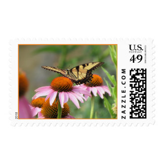 Tiger Swallowtail on Purple Coneflower Postage