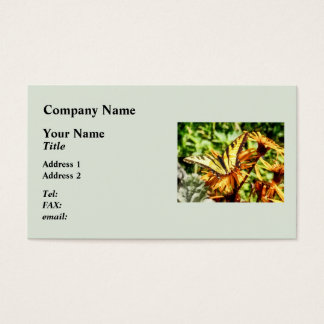 Tiger Swallowtail on Yellow Wildflower Business Card
