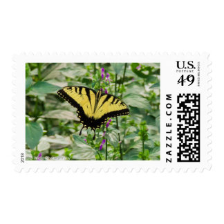 Tiger Swallowtail Postage Stamps