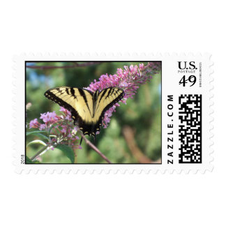 Tiger Swallowtail Postage