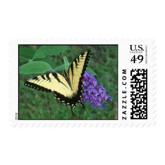 Tiger Swallowtail Postage Stamp