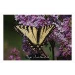 Tiger Swallowtail Posters
