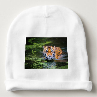 Tiger Swimming Baby Beanie