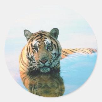 Tiger Swimming Classic Round Sticker