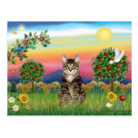 Tiger Tabby Cat 1 - Bright Country Postcard