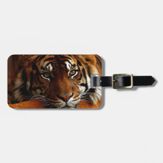 tiger tag for luggage