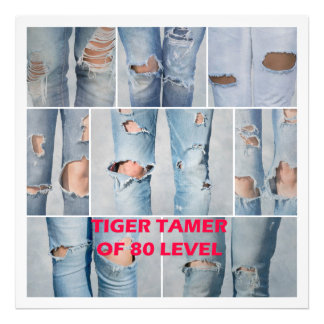 Tiger tamer of 80 level photo print