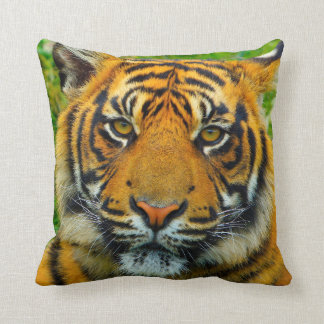 Tiger - The Last Tiger? Throw Pillow