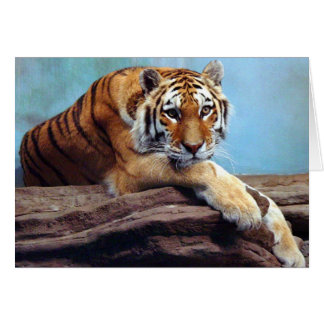 """Tiger """"Thinking of You"""" Card"""
