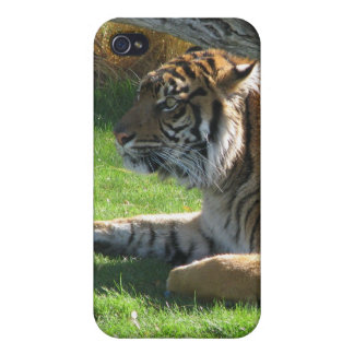 Tiger Tiger iPhone 4/4S Cases