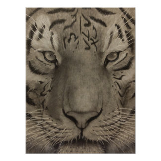 tiger tiger poster water ink picture harmony