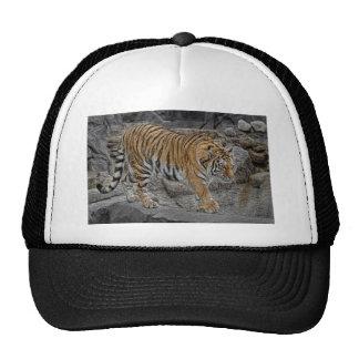 Tiger Tight Rope Walk Ball Cap Trucker Hat
