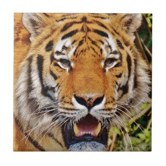Tiger Tile