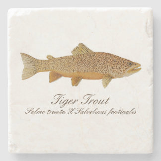 Tiger Trout Coaster