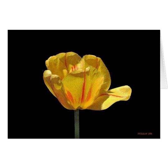 Tiger Tulip Card