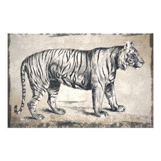Tiger Vintage Wildlife Grunge Decorative Stationery