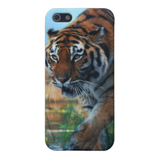Tiger wading in water case for iPhone SE/5/5s