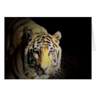 Tiger Walk Card