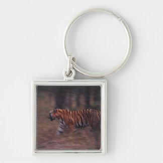 Tiger Walking through Forest Keychain