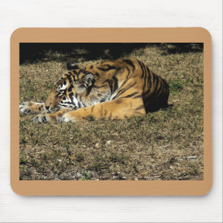 Tiger (watercolor) mouse pad