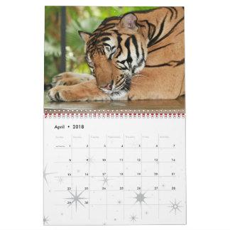 Tiger Wild Cat Cool Welcome Home Destiny Destiny'S Calendar