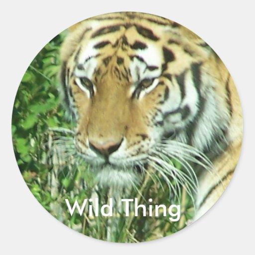 tiger, Wild Thing Classic Round Sticker