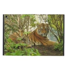 Tiger Wildlife Powis Ipad Air Case at Zazzle