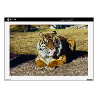 "Tiger with a 'tude 17"" Laptop skin for Mac & PC"