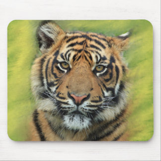 Tiger with Green & Yellow Background Mouse Pad
